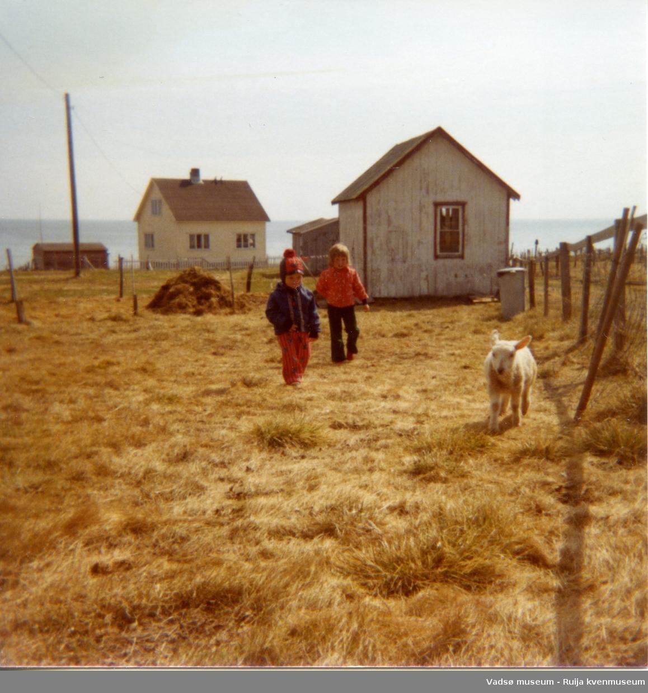 Barna til Håkon Bauna og lam på gårdsplassen. Den hvitmalte bygningen er Baunas sommerfjøs for kyr. Huset til Isak Huru i bakgrunnen.