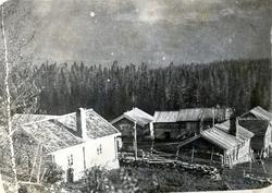 Garden Eikrehagen, 51.19, i Hemsedal, ca.1919.