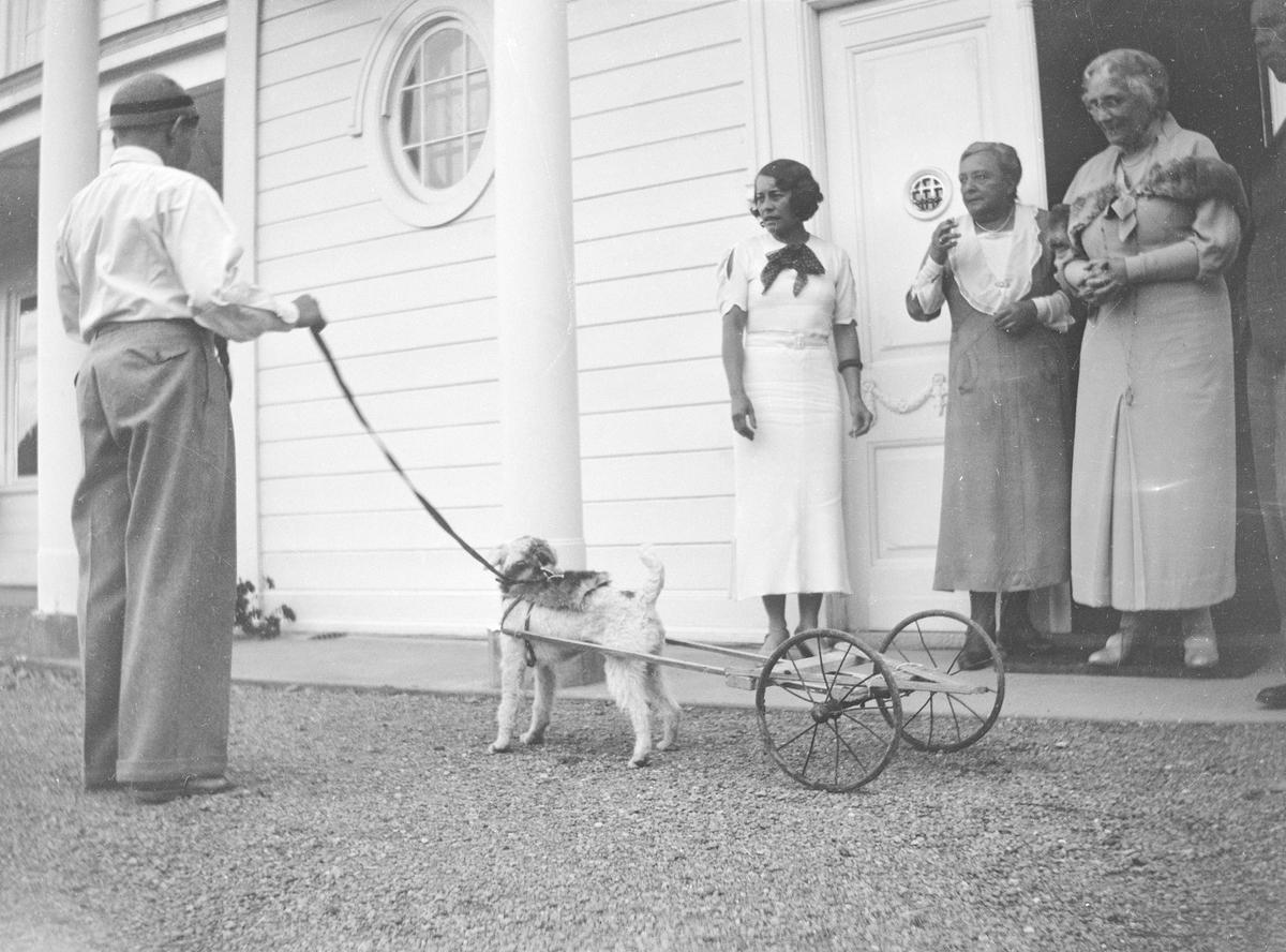Bilde fra gårdsplassen på Linderud Gård. En mann står med ryggen til og holder en hund i bånd. Det er montert en leketralle av planker med to hjul til hunden som ligner på en Terrier. Celina Marie, Elise Mathiesen, uidentifisert kvinne og Carl Pihl Schou står ved inngangen til hovedhuset på Linderud gård.