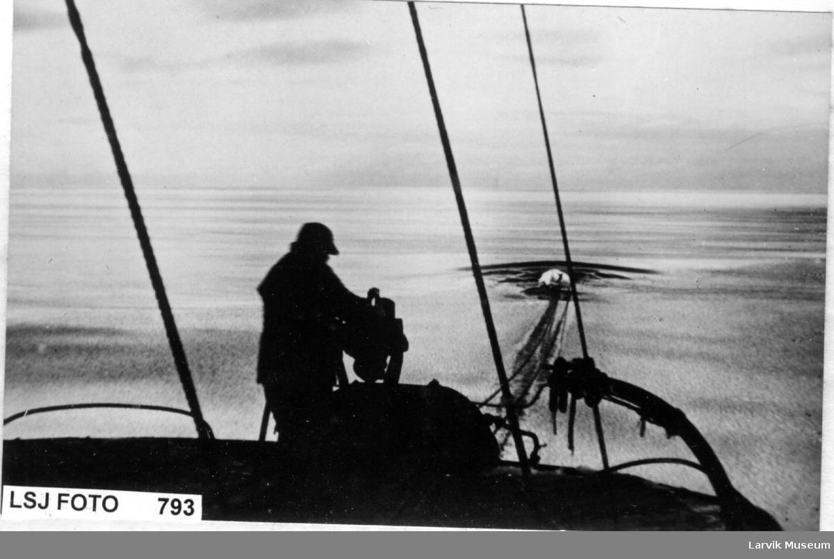 Hvalskytter ved hvalkanon, har fanget en hval