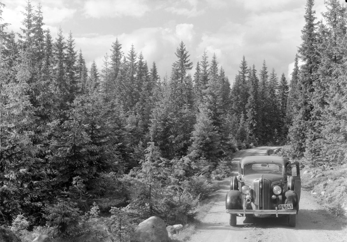 Løten Almenning. Skogsbilveg, personbil, D-4045.