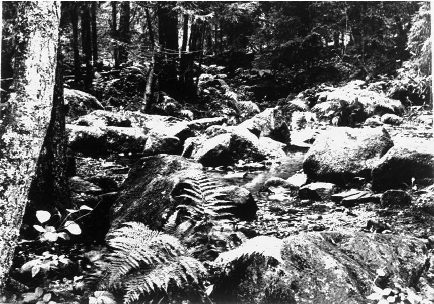 Från uppsnyggningen av Ruskela källa 1962.