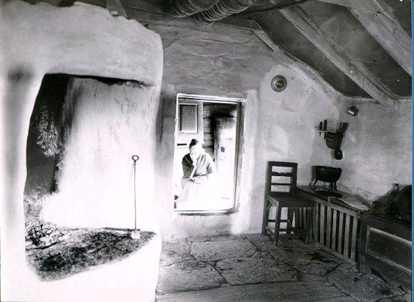 Interiör, med hönshuset inne och kakspettet i taket.
