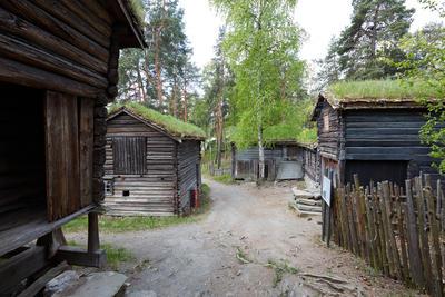 The Crofters farm from Trøndelag