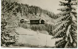 Vinter i Norge