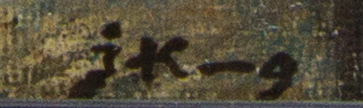 Karl XII stående i helfigur med ena handen i sidan. Den andra pekar på ett lejon. Ovanför svävar Fama, eller motsvarande allegorisk figur. Skissartat utförande.