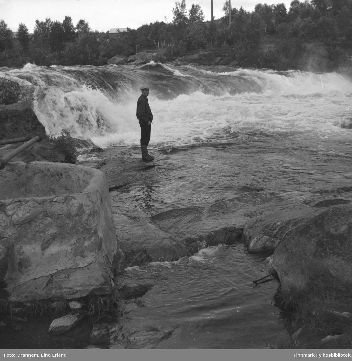 Uuno Lappalainen ved bredden av fossen i Neidenelva.