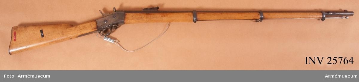 Grupp E II f. 1867 års gevär m/1868.