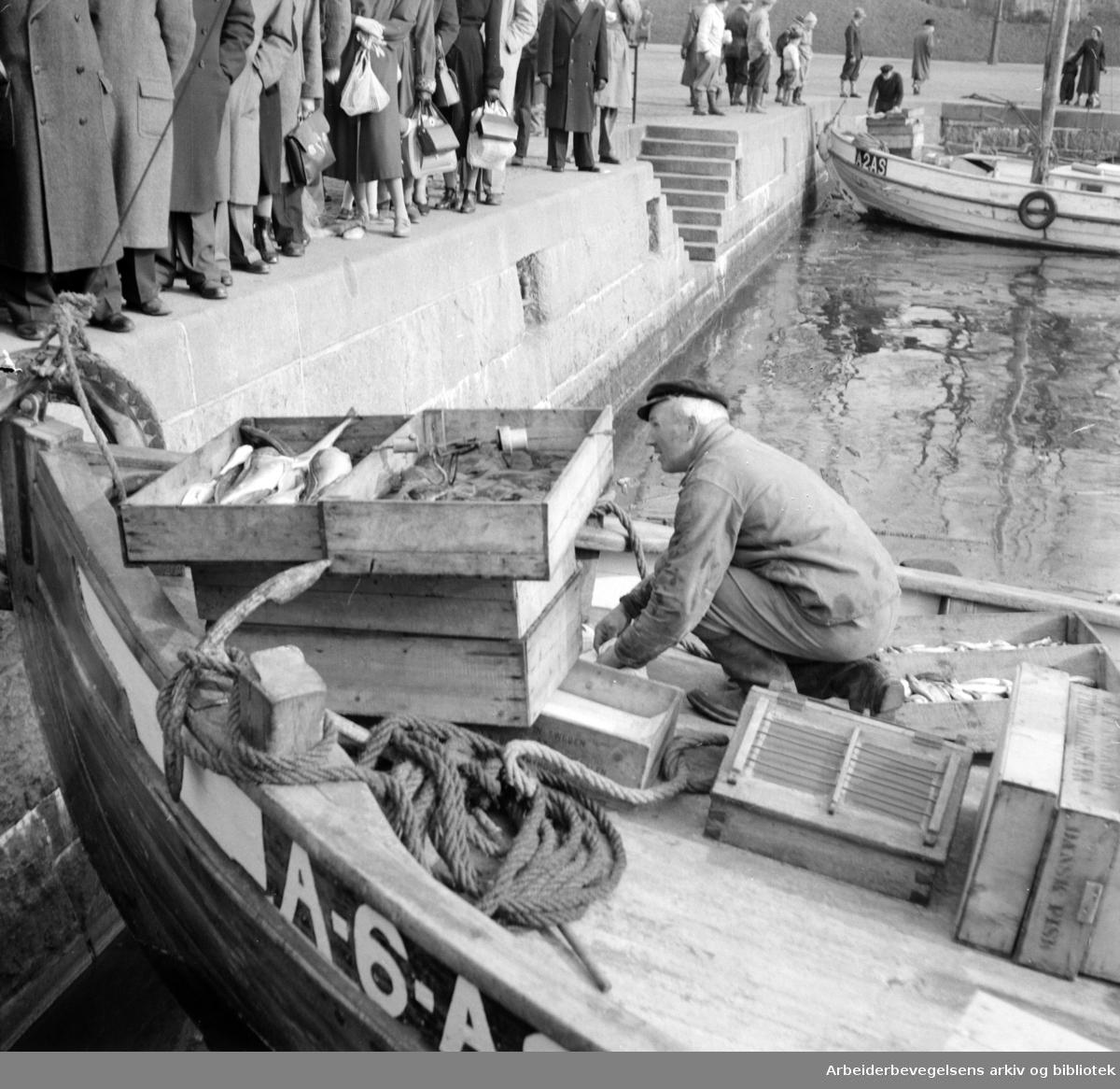 Oslo Havn: Honnørbrygga:.Fisk- og rekesalg.Mars 1953