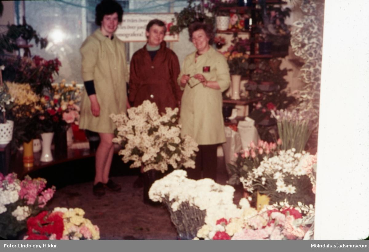 Tre kvinnor fotograferade i blomsteraffären vid Gamla Torget i Mölndal med adress Kvarnbygatan 45, 1970-tal. Kvinnan till höger hette Kerstin och var ägare av affären. Lokalen används numera av Corpus Pizzeria.  För mer information om bilden se under tilläggsinformation.