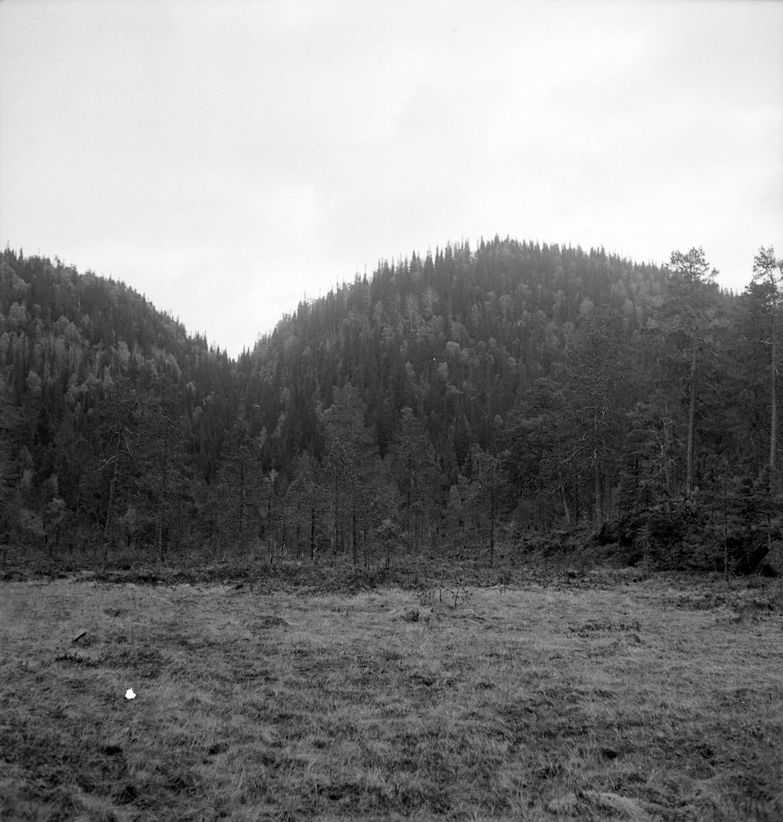 Nygårdsvollen ved Hommelvik
