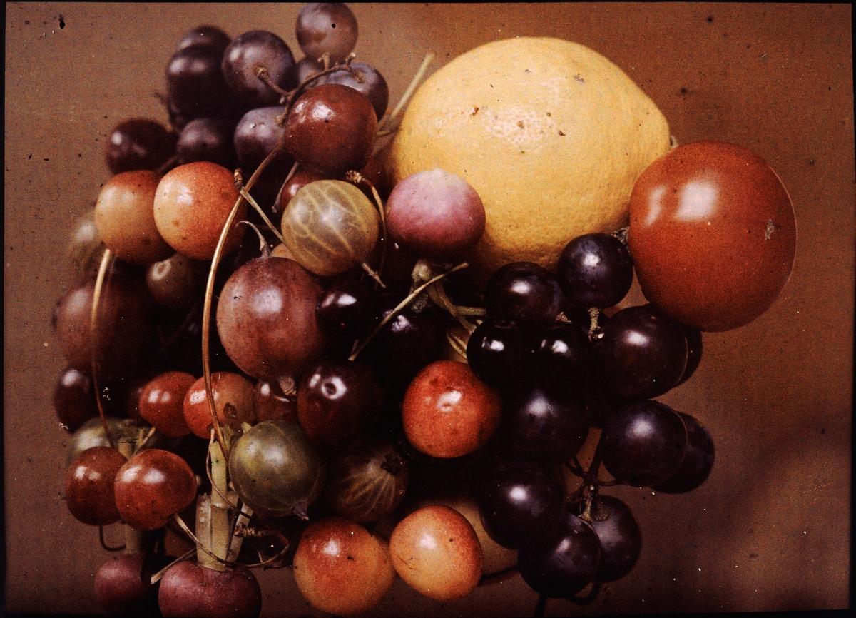 Lumières-autokrom. Stilleben: Körsbär, krusbär, citron och tomat m m.