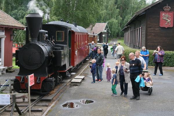 <p>Norsk Jernbanemuseum eies og drives av Jernbanedirektoratet. Museet ble grunnlag i 1896 og ligger på Hamar. Det skal dokumentere og formidle den norske jernbanevirksomhetens utvikling, og bidra til økt kunnskap om jernbanehistoriske forhold.</p>