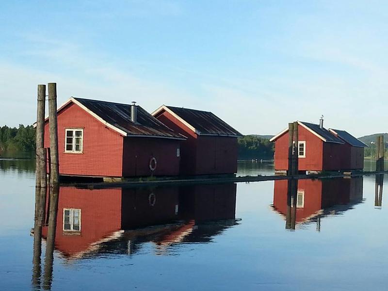 Hvilebrakker, MiA Fetsund lenser (Foto/Photo)
