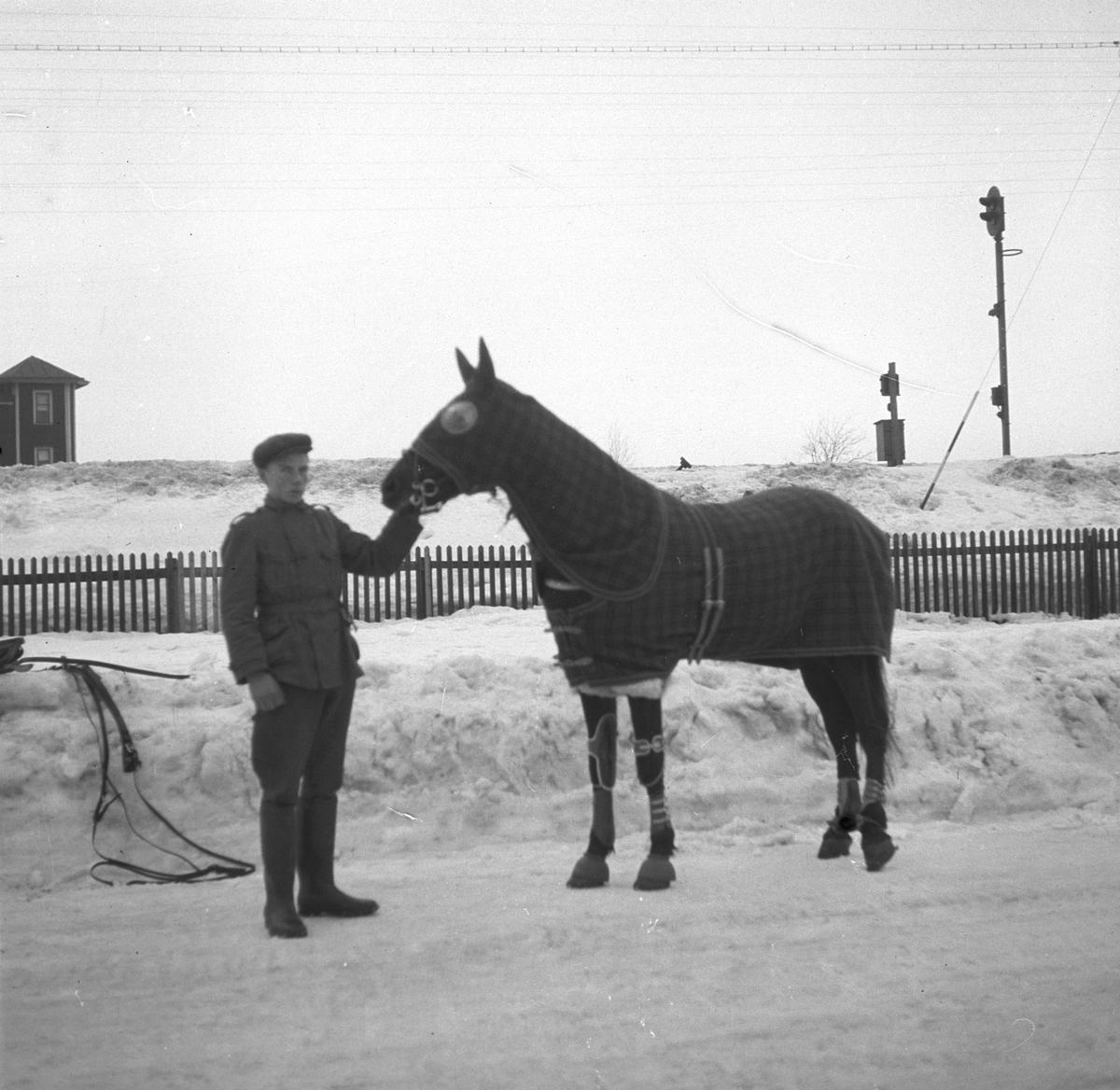 Malmbergs startades 1905 av Elof Malmberg. Blev en av Sveriges ledande producenter av artiklar för idrott, jakt, fiske, skytte och friluftsliv. En man och en häst med utrustning från Malmbergs. Den 26 januari 1938