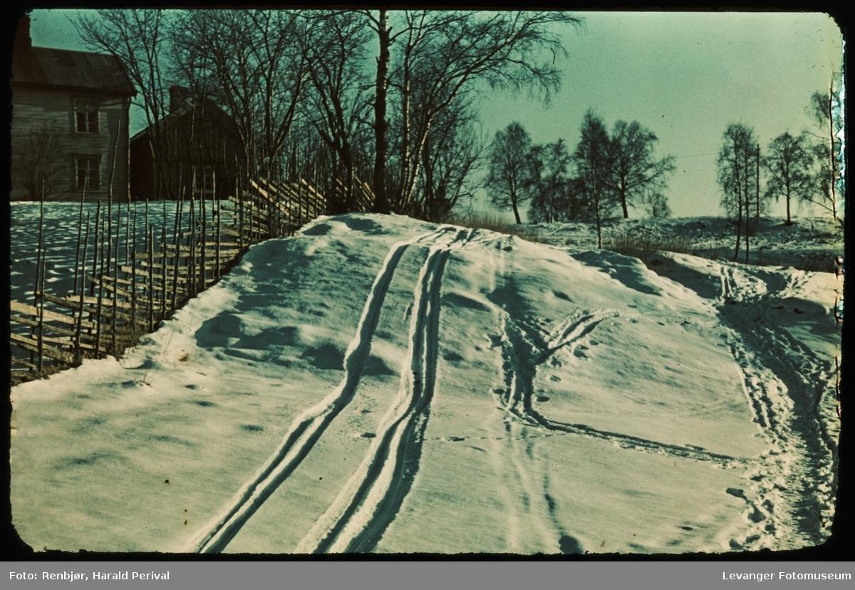 Skigard og skispor,