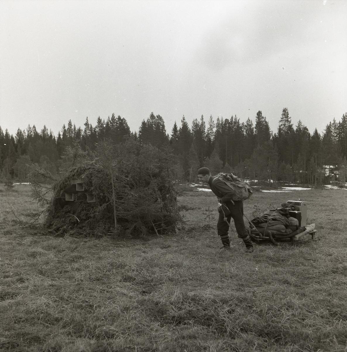 Över ett gräsfält släpar en man sin släde lastad med friluftsutrustning. Mannen bär en ryggsäck, mössa och kraftig stövlar. Vid mannens sida ligger en rishög på det annars öppna fältet. I bakgrunden står en skog där snön fläckvis ligger kvar på marken.