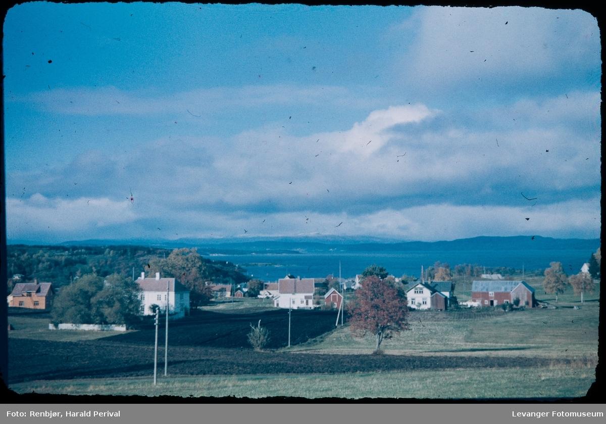 Fra geite- området mot fjorden i Levanger.