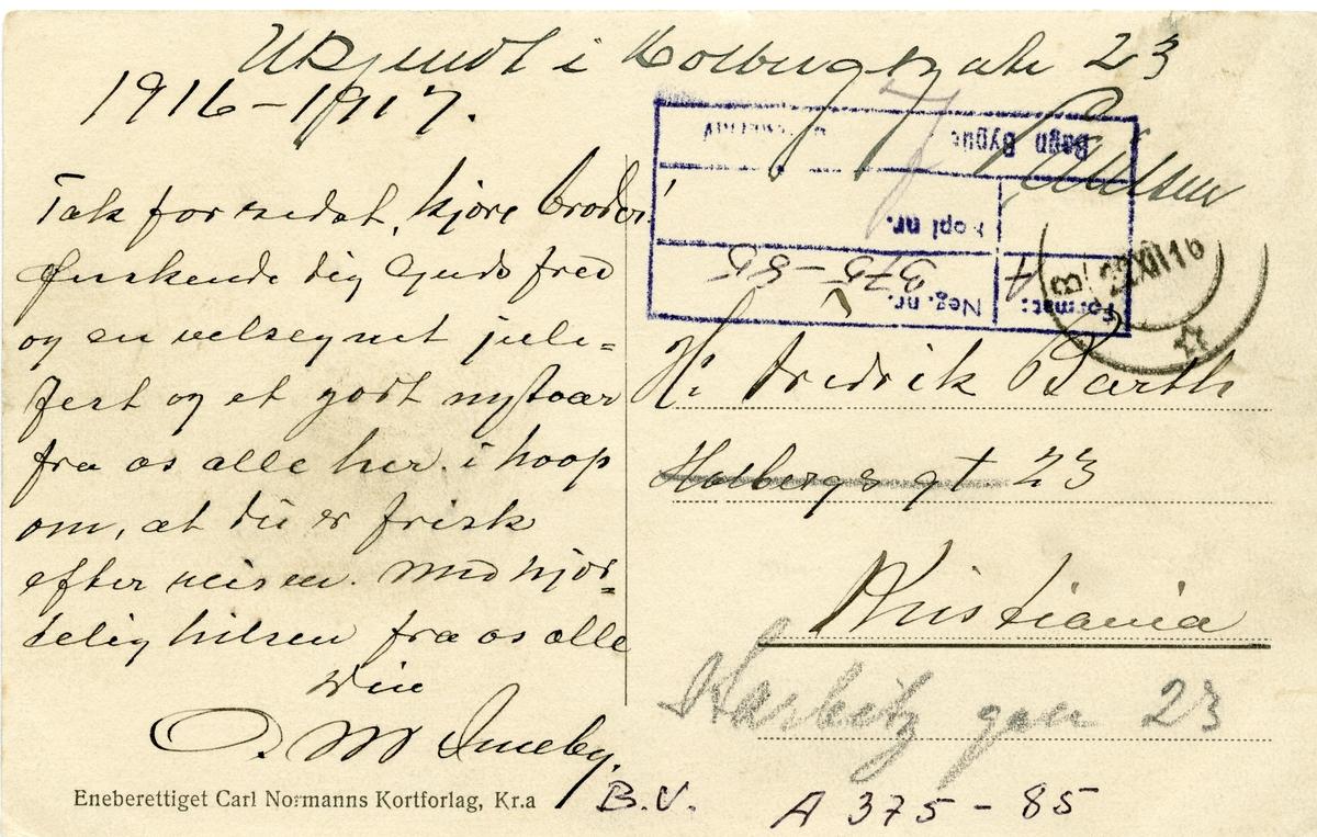 Postkort med motiv av Bagnsmoen, Bagn, Sør-Aurdal.