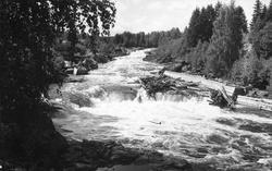 Alftaströmmarna i Voxnan. Foto 1926.