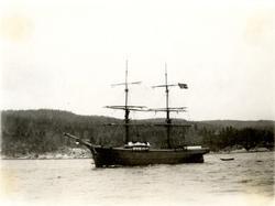 Brigg 'Atlantic' (ex tysk s.n.)(b. 1870, J. F. Strenge, Fünf