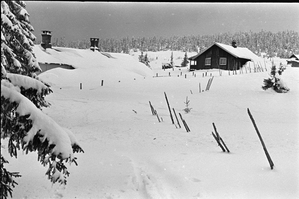 Budor, Løten, hytte, vinter,