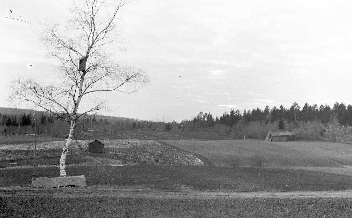 """Utsikt från Erik-Lars"""" mot väster, den gamla ladan till höger"""