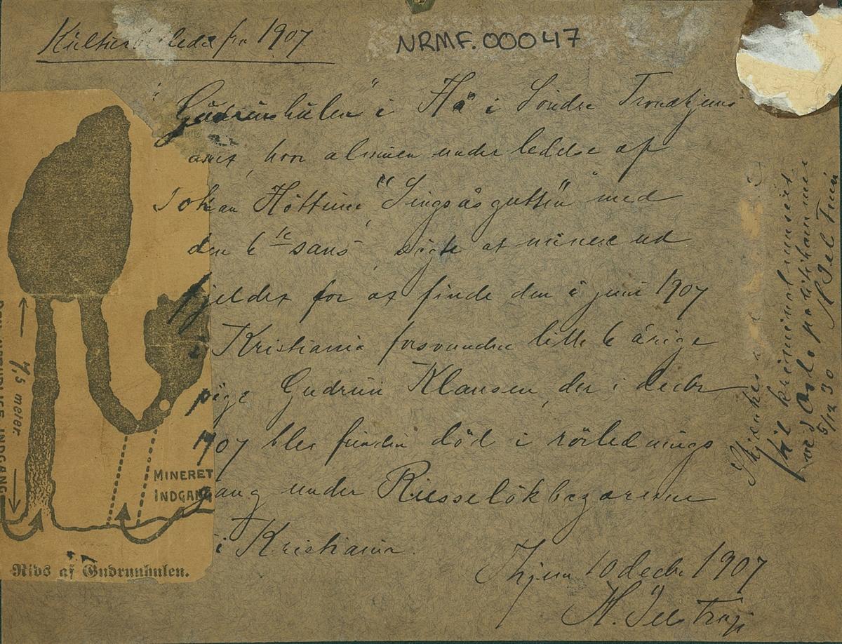 Gudrunhulen i Flå 1907