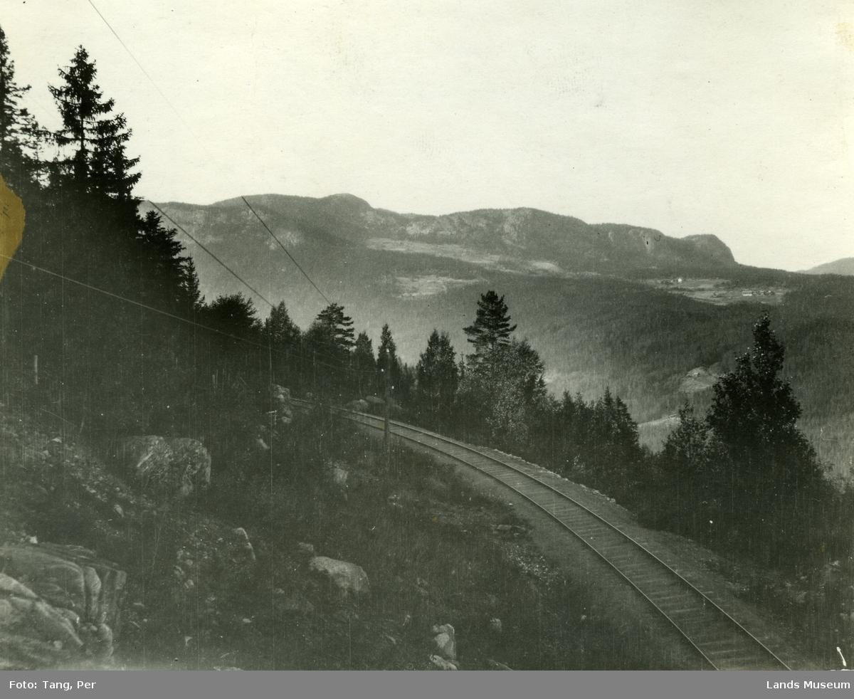 Etnas dal. Nordgarda, Stuveåsen og Vealøysa