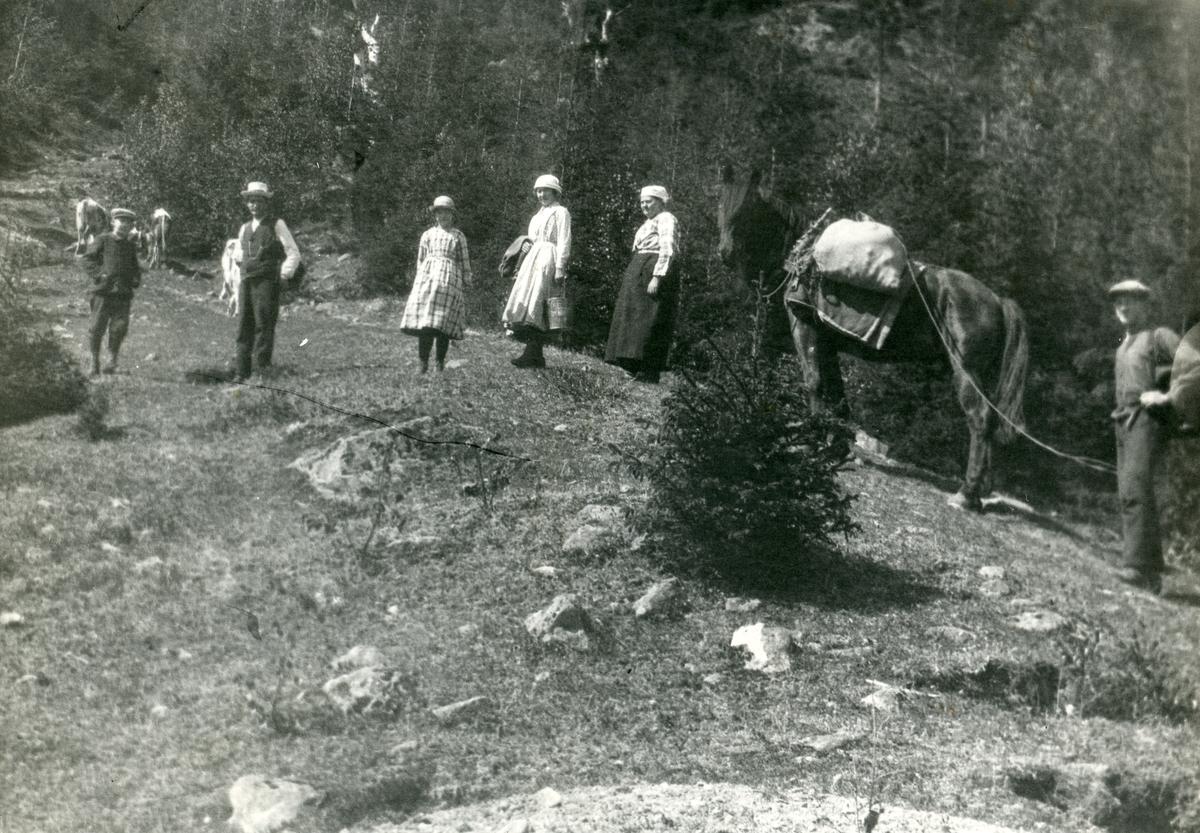Seterflytting. Ingvar, Dorthea, Olea, Aslaug, Knut og Ola Kamben.
