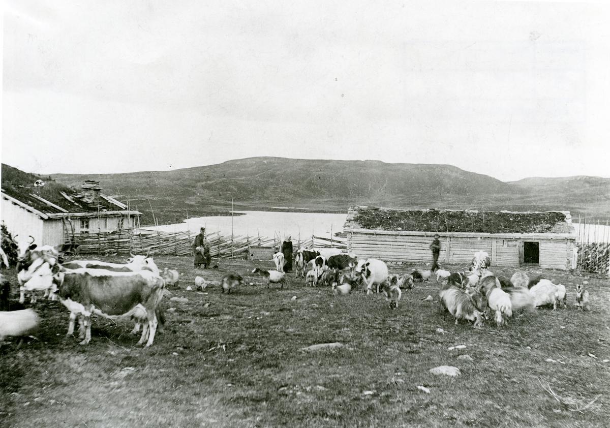 Skaret, Stavadalen, 1890-åra.