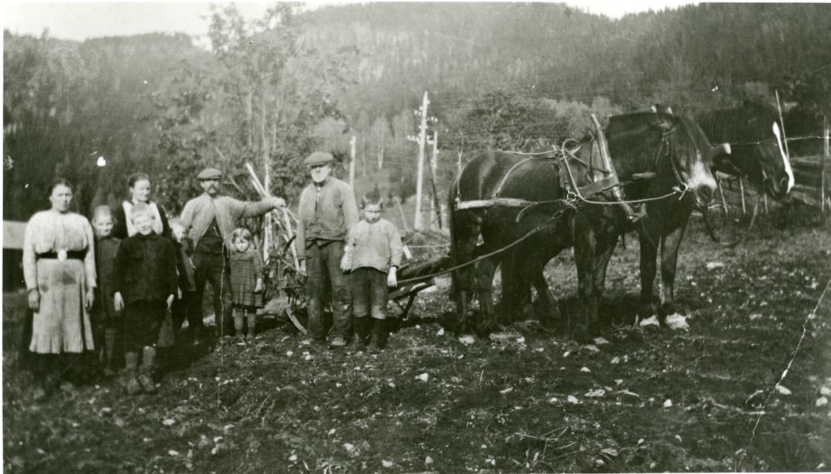 Potetgravst på Tambugarden, Øystre Bagn, ca 1920.