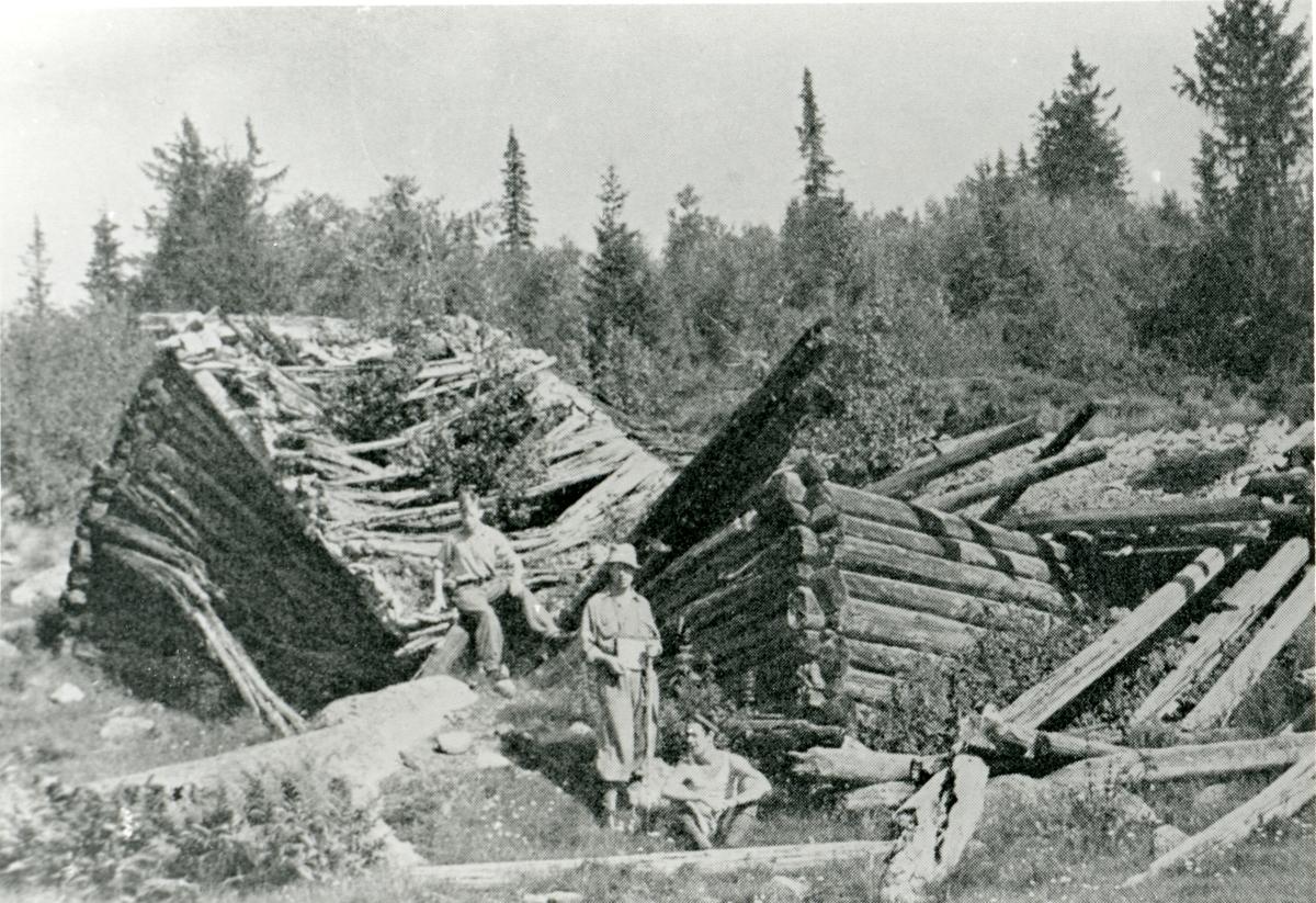 Ruiner av tømmerhus/låve.
