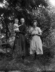 Hedströms, Solbo, Uppland 1925