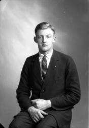 Ateljébild på en man i blazer och slips. Enligt Walter Olson
