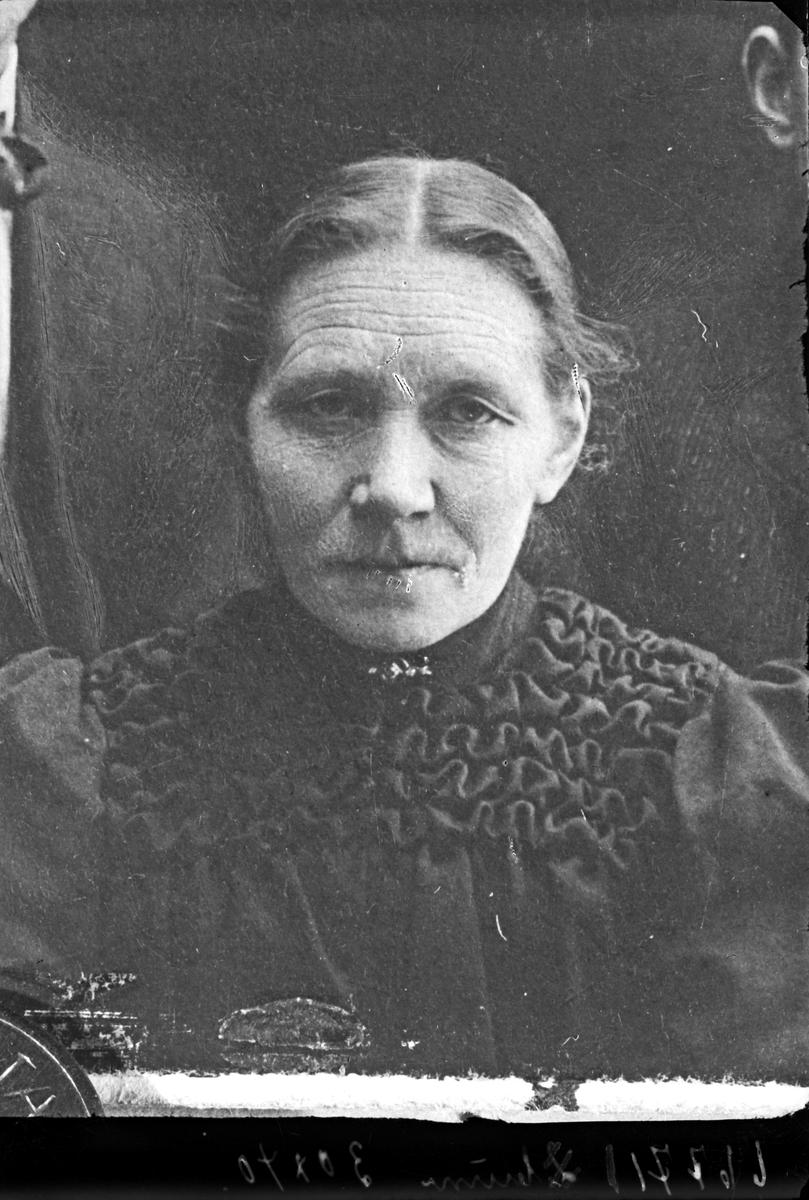 Portrett. Kvinne. Kopi. Bestillt av Valdborg Skartland. Haraldsgt. 33.