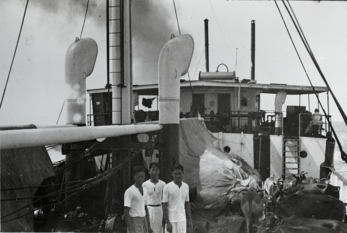 Vannbøfler og mannskap ombord i D/S 'Hermod' (b.1925) på reise mellom Bangkok og Hong Kong