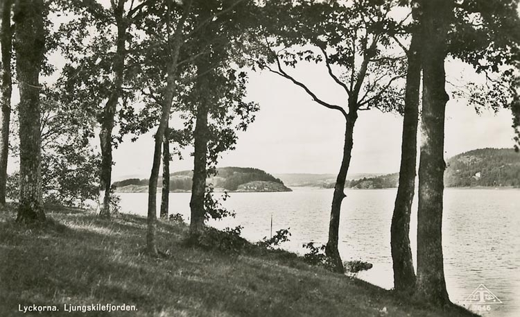 """Enligt Bengt Lundins noteringar: """"Ljungskilefjorden från Viktoriaparken""""."""