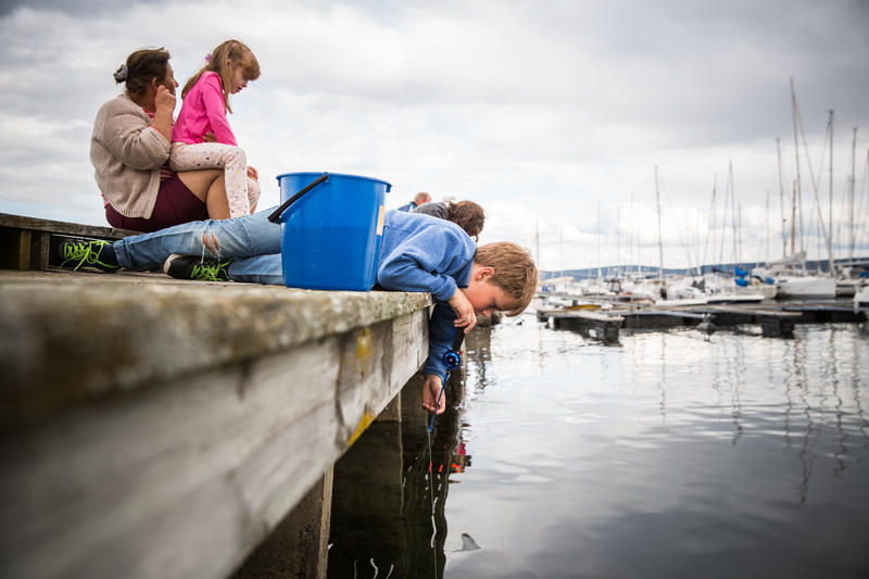 Fisker krabber på brygga (Foto/Photo)