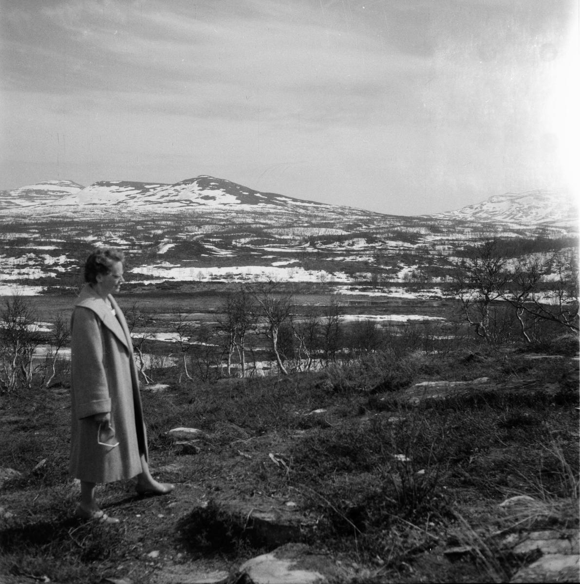 Fjällfloden Maj-1960