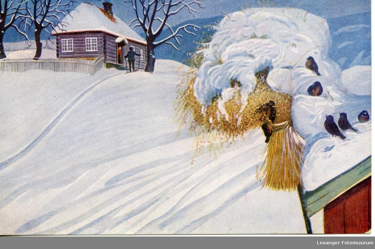 Postkort, julekort kornnek med dompapp.