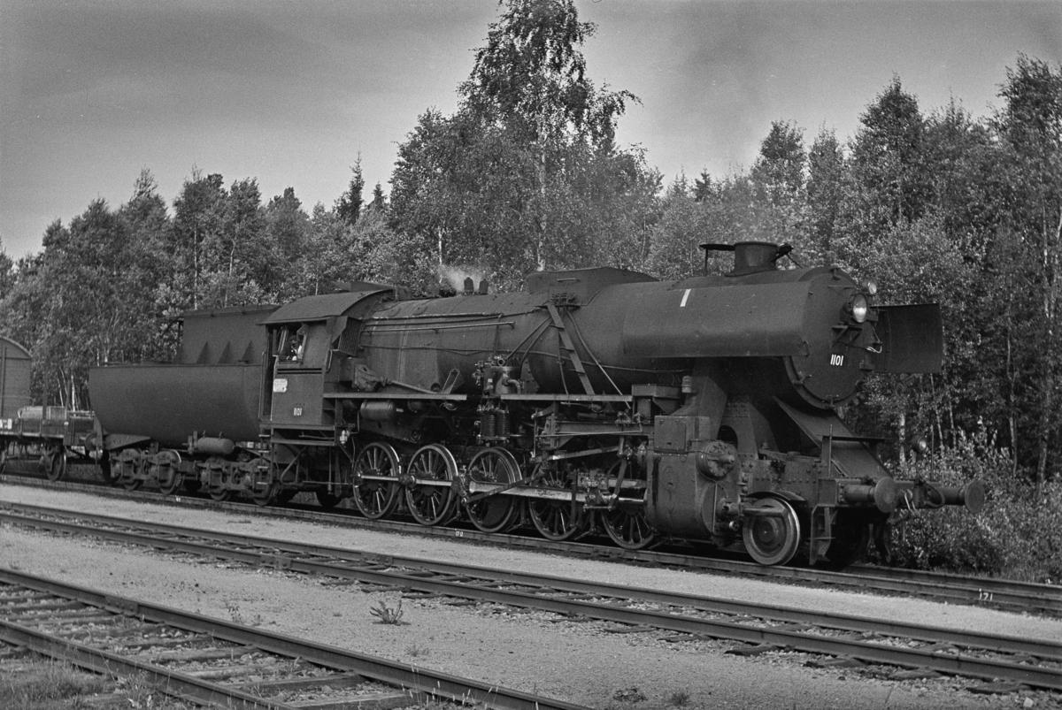 Nordgående godstog på Agle stasjon. Toget trekkes av damplokomotiv type 63a nr. 1101.