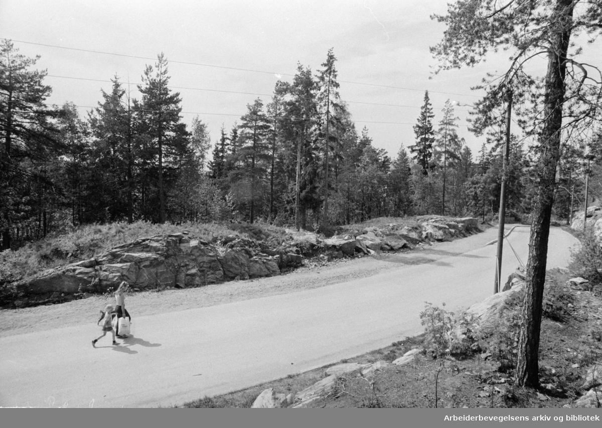 Tokerud: Utbygningsområdet ligger sør for Vesthellinga borettslag. Mai 1975