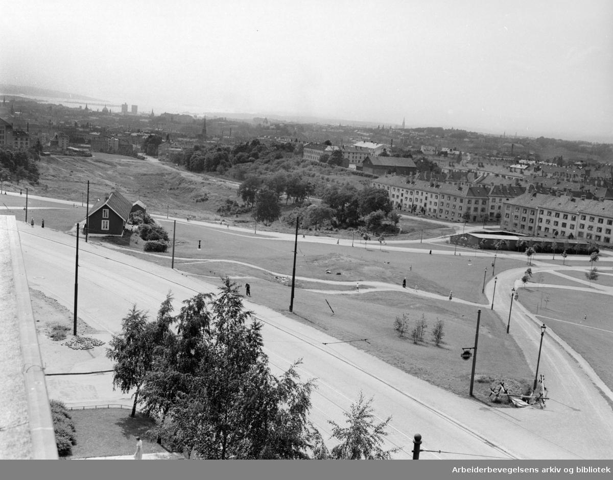 Torshovdalen park. Juni 1953