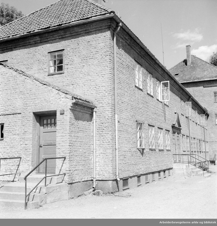 Gamle Tøyen . Gårder som trenger oppussing. Juli 1955