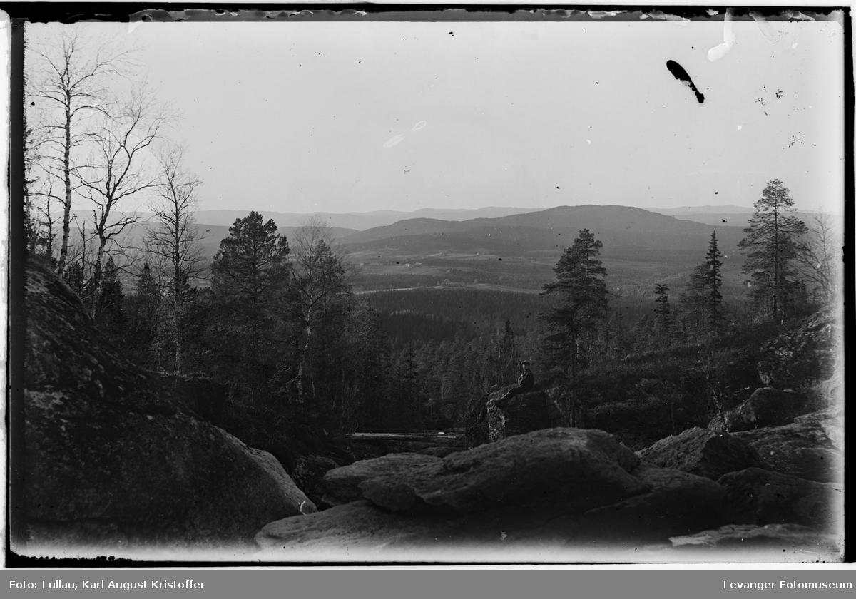 Ved Dølaelva, Ogndal Steinkjer