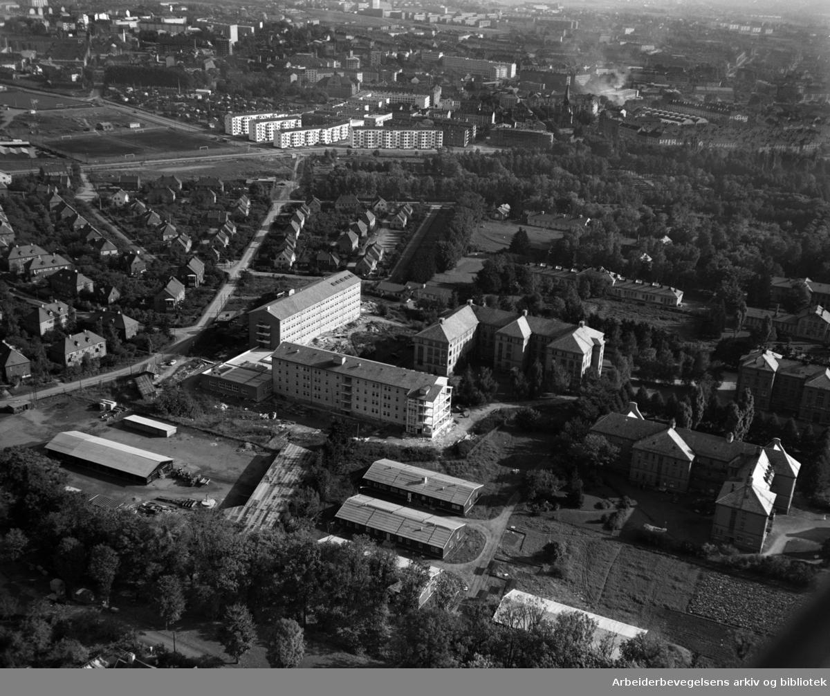 Ullevål Sykehus. Sagene kirke og Voldsløkka i bakgrunnen. Flyfoto. Oktober 1951