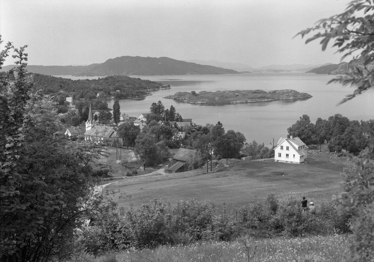 Skånevik, bygd, tettstad, hus, kyrkja, kirke, holme, bakke, fjord, nes, busker, tre,