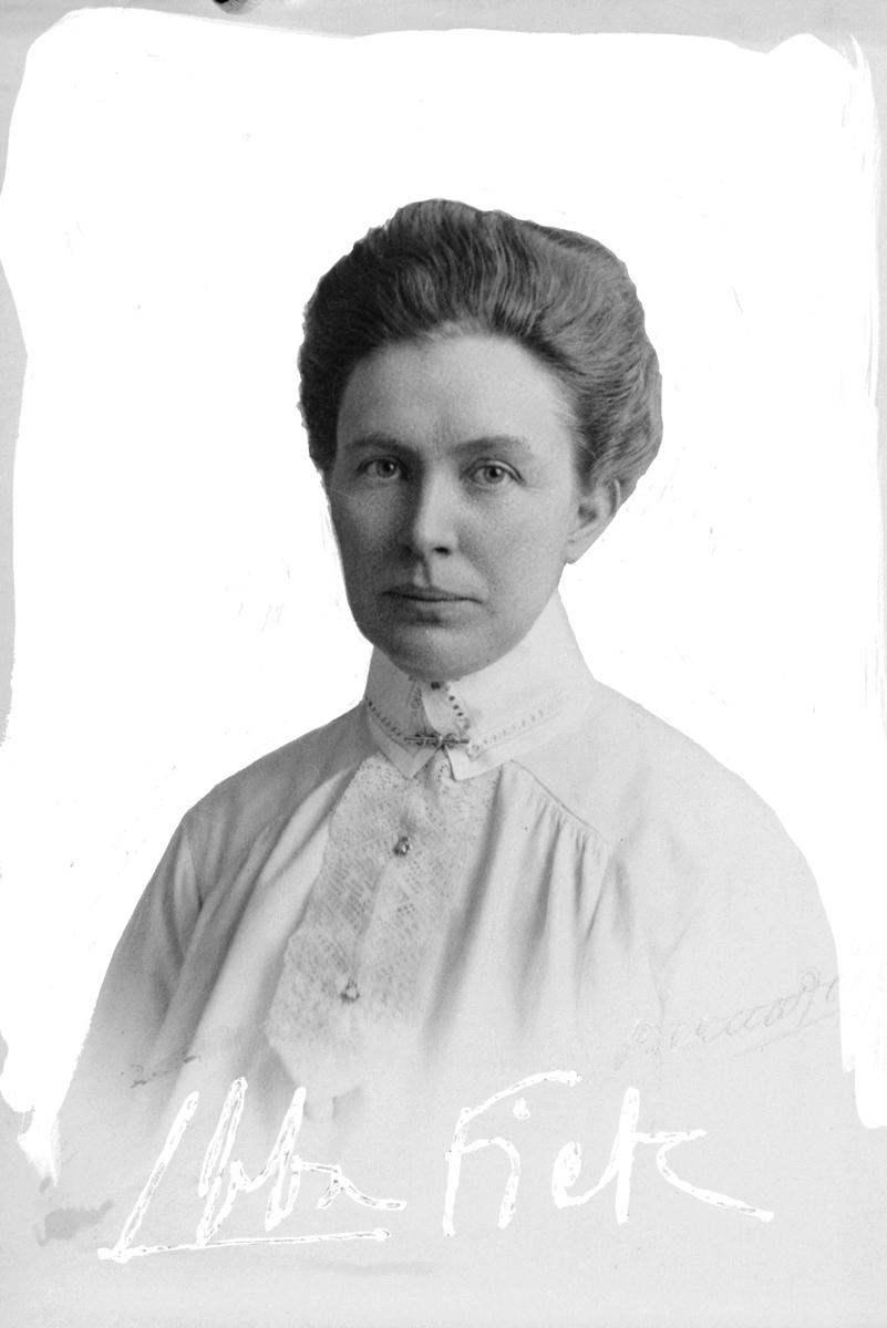 Ebba Fick var en profil inom hemslöjdsrörelsen. 1928 blev hon föreståndare för Svenska hemslöjdsföreningarnas riksförbunds försäljningscentral i Stockholm. År 1935 utsågs hon till statens hemslöjdsinstruktör.  Fadern var VD för Uppsala-Gävle järnväg.