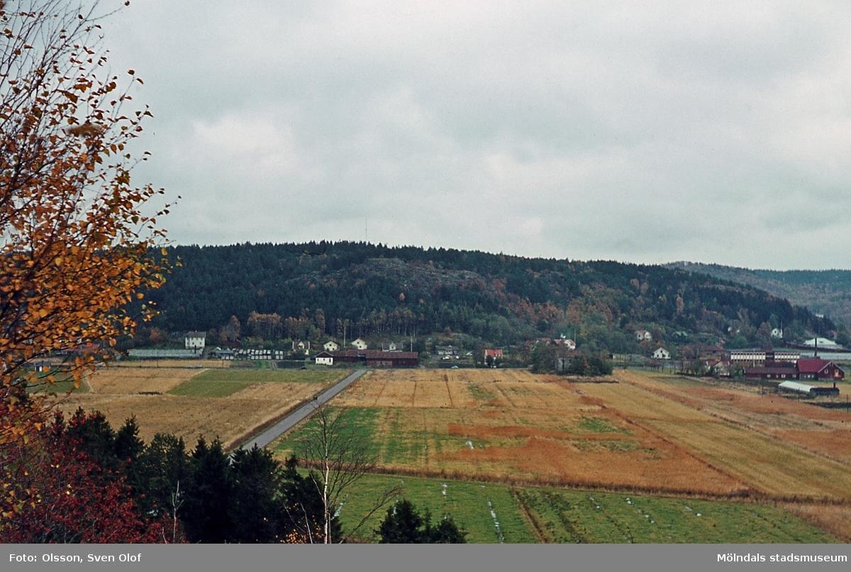 Vy mot bebyggelse i Toltorps by, Mölndal, år 1965. T 1:31.